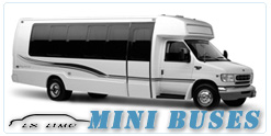 Mini Bus rental in Seattle, WA